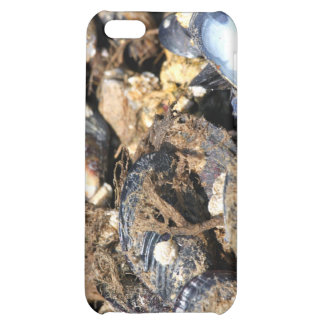 Mussels iPhone 5C Covers