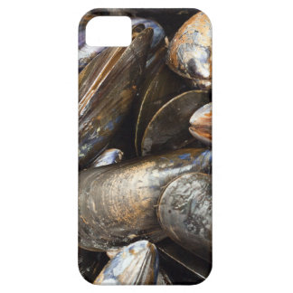 Mussels iPhone SE/5/5s Case