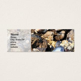 Mussels Mini Business Card