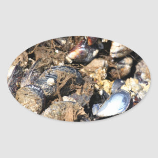 Mussels Oval Sticker