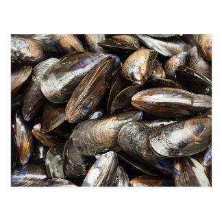 Mussels Postcard