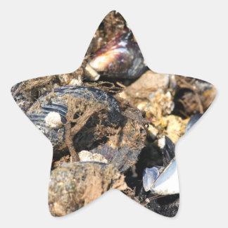 Mussels Star Sticker