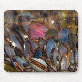 Mussels Under the Ocean Mousepads