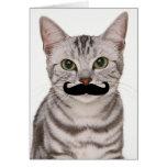 Mustache Cat Card