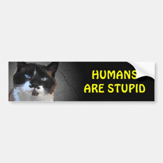 Mustache Cat Says Humans are Stupid Bumper Sticker
