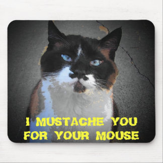 MUSTACHE CAT wants your mouse Mouse Pad