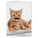 Mustache Kitty Card