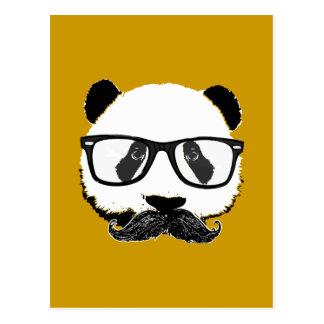 Mustache Pandaz In Da Disco Postcard