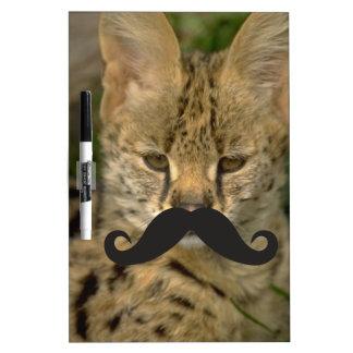 Mustache Qpc Template Dry Erase Boards