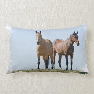 mustang-16.jpg throw pillow