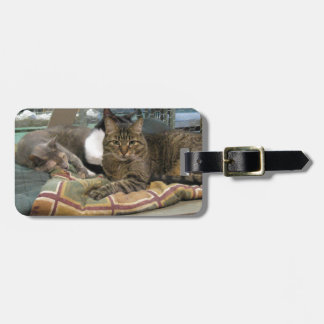 Mustang and Cats Luggage Tag