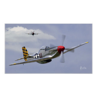 Mustang and Thunderbolt Poster