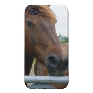 Mustang at Fence iPhone 4 Case