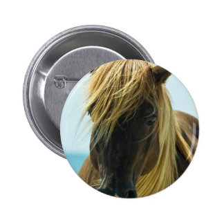 Mustang Button