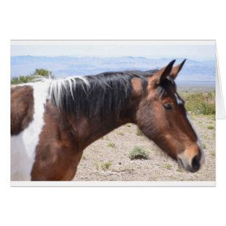 Mustang Card
