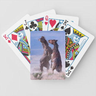 Mustang Fight 2 Playing Cards
