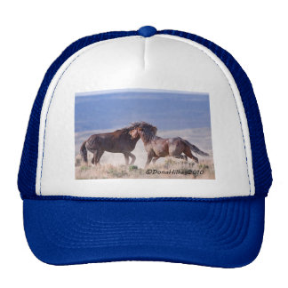 Mustang Fight Hat