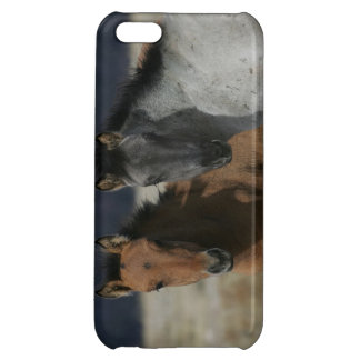 Mustang Foal Headshot iPhone 5C Cover