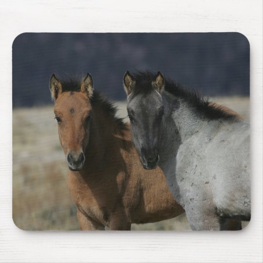 Mustang Foal Headshot Mouse Pad