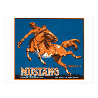 Mustang Fruit Vintage Label Postcard