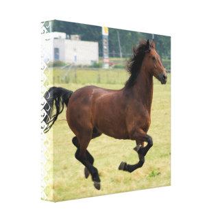 Mustang Galloping Canvas Print