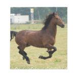 Mustang Galloping Notepad