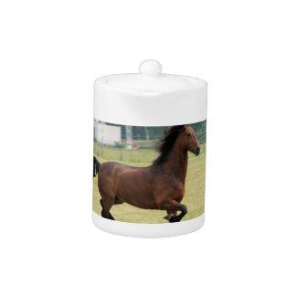 Mustang Galloping Teapot