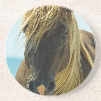 Mustang Horse Coasters