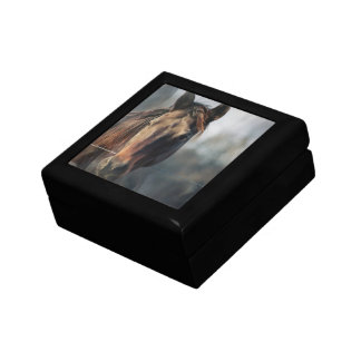 Mustang Horse Gift Box