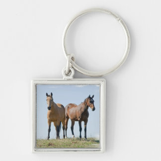Mustang Horse Pair Keychain