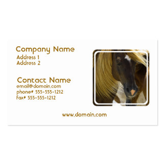 Mustang Horse Photo Business Card