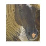 Mustang Horse Photo Notepad