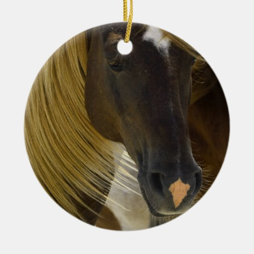 Mustang Horse Photo Ornament