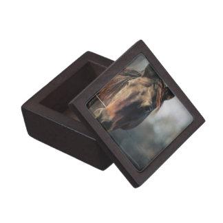 Mustang Horse Premium Gift Box