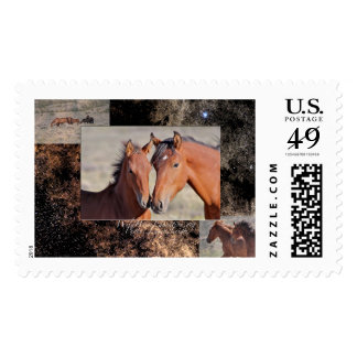 Mustang Love, mare and foal Postage