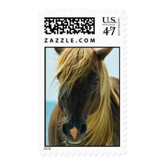 Mustang Postage Stamp