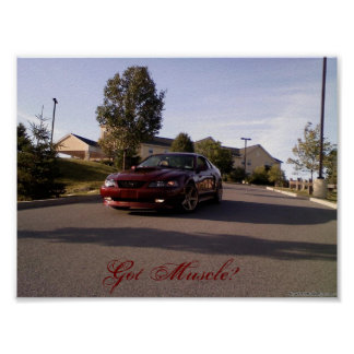 Mustang Posters