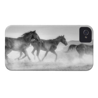 Mustang Run iPhone 4 Covers