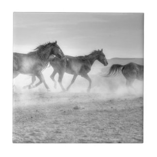 Mustang Run Small Square Tile