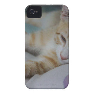Mustang Sally Case-Mate iPhone 4 Case