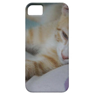 Mustang Sally iPhone SE/5/5s Case
