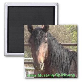 Mustang-Spirit Magnet
