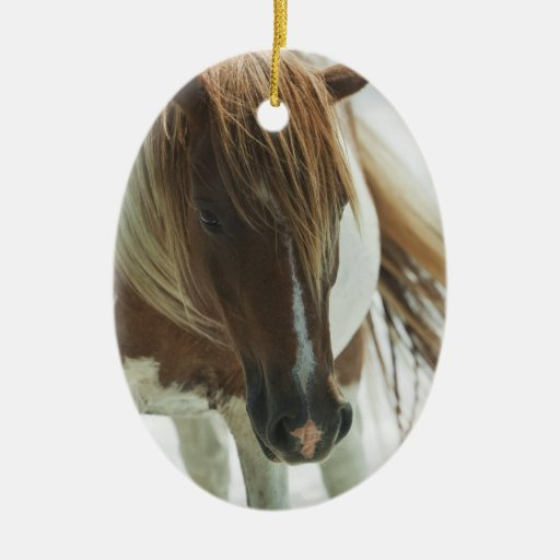 Mustang Wild Horse Ornament