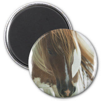 Mustang Wild Horse Round Magnet Refrigerator Magnets