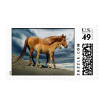 MustangMare Postage Stamps