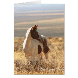Mustango de ojos azules salvaje de Card~ pequeño Tarjetón