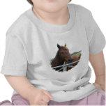Mustango en la camiseta del bebé de la cerca