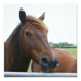 Mustango en la invitación de la cerca