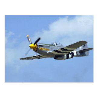 Mustango norteamericano de P-51D, pequeño caballo Tarjetas Postales
