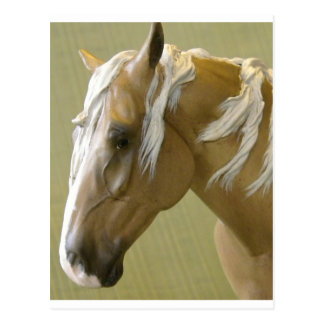 Mustango Tarjeta Postal